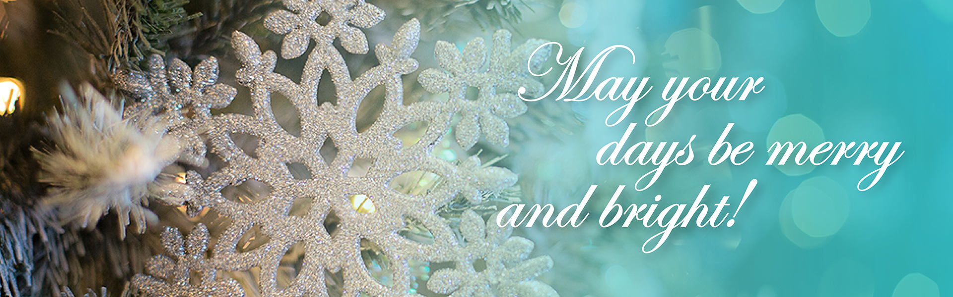 Happy Holiday Season from Polk-Burnett!